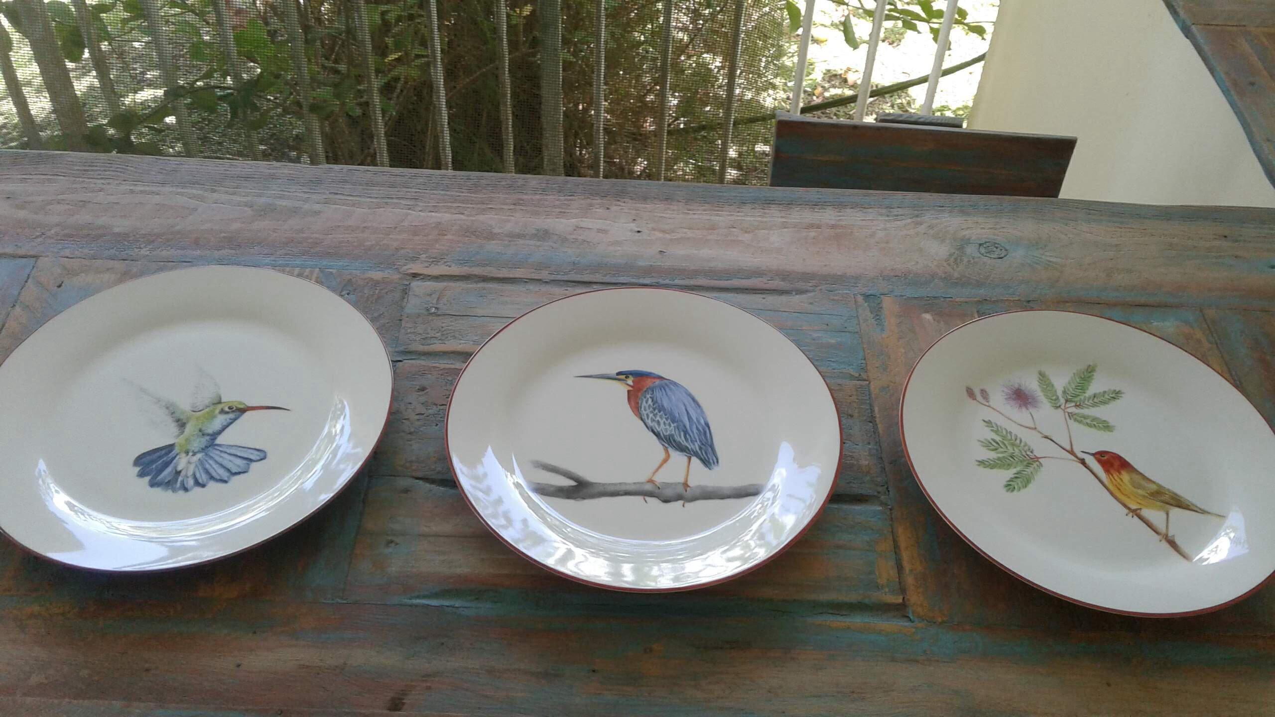 Peinture Sur Porcelaine Assiette une année de peinture sur porcelaine . les oiseaux de la